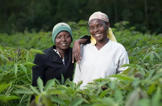 EU-FUNDED PROJECT LAUNCHES IN KENYA