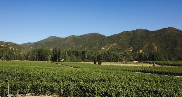 Viña Vik on SelfishMe Travel blog