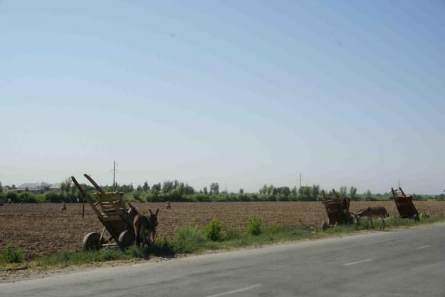 Workplace parking scheme, Uzbekistan