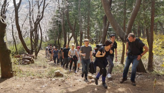 One of the joint hikes I led with Busan group. This one was for the Jinhae Cherry Blossom Festival and Jangboksan.