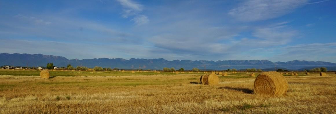 Swan Mountain range, south of Kalispell, Montana