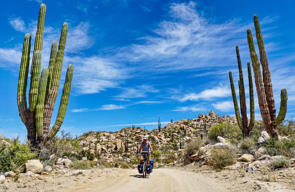 On the Baja Divide route near Rancho Piedra Blanca