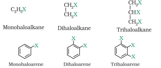 Classification of Haloalkanes