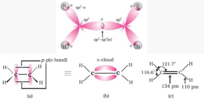 Structure of double bond (ethene)