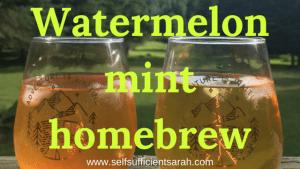 Small batch brewing! Watermelon mint brew