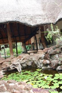 Национальный Парк Крюгера.