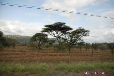 Свазиленд.