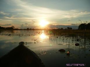 Река Окаванго.