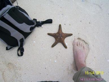 Отдых на Занзибаре.