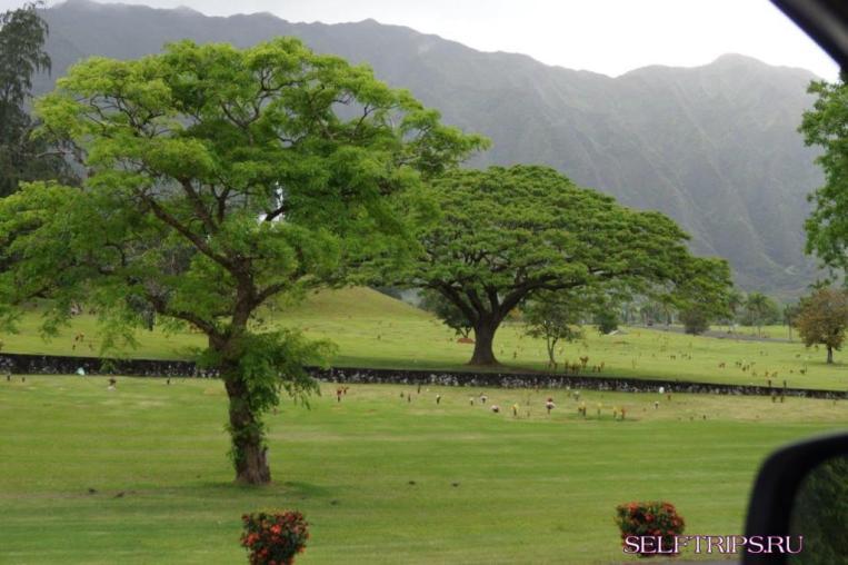 Остров Оаху