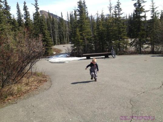 Денали парк и гора (Мак-Кинли).