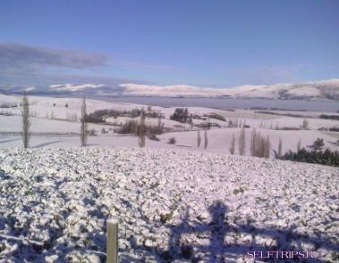 Зима в Новой Зеландии