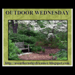 Outdoor-Wednesday-