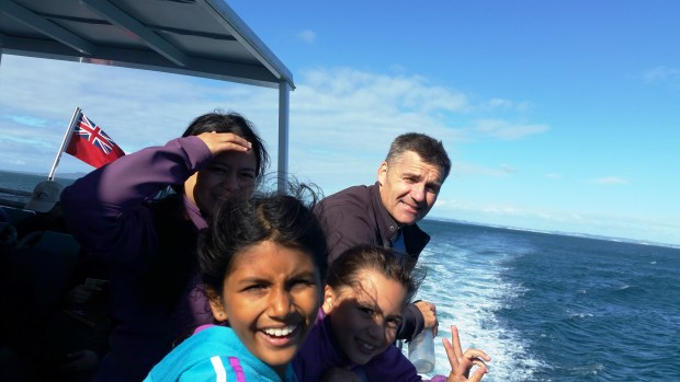 On board 360 Discovery Cruise to Tiritiri Matangi