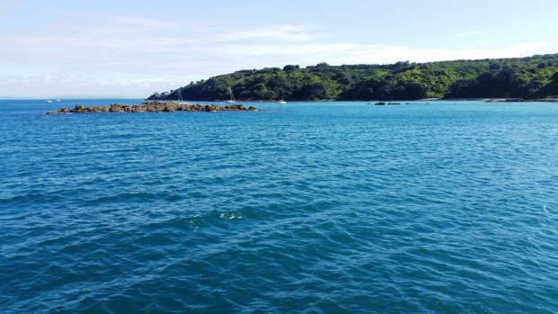 Blue waters of the Hauraki Gulf