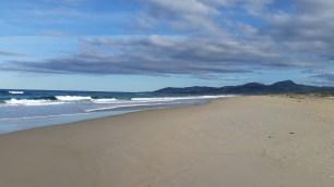 scamander beach