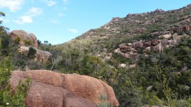 pink granite rocks at Freycinet National Park