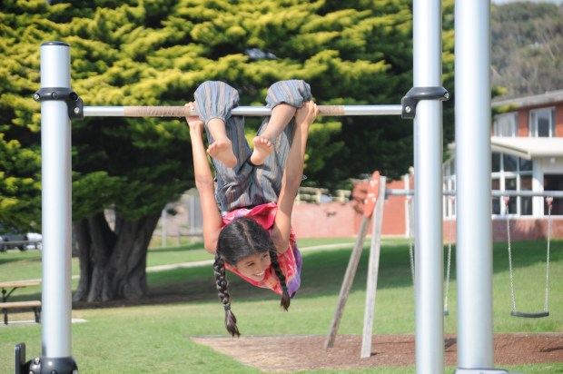 Shama enjoying outdoor gym, Narooma