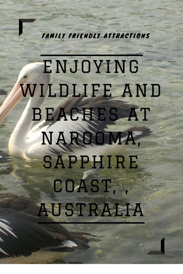 Attractions at Narooma, Sapphire Coast, Australia