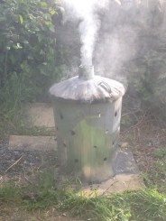 The clean-up job: Burning the pigs in an incinerator and bleaching around the garden