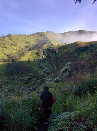 The trail to the peak of Mt. Merbabu.