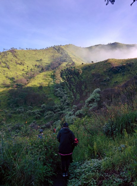 The trail to the peak of Mt. Merbabu.