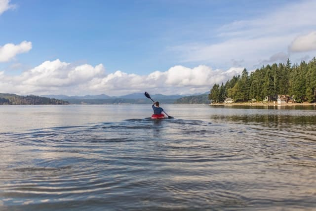 kayaking on a lake near a forest