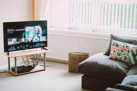 Living room with Netflix on TV