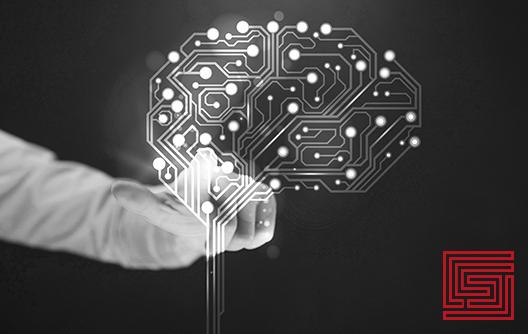 hersenen-sep