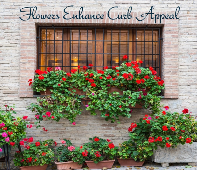 Flowers Enhance Curb Appeal
