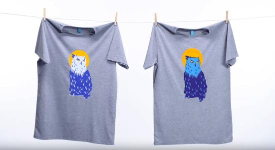 Flex Printing vs Flock Printing