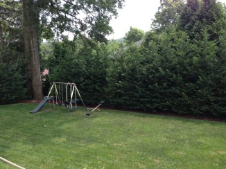 Large private yard overlooking golf course