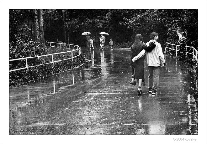 Rain_by_kovalvs