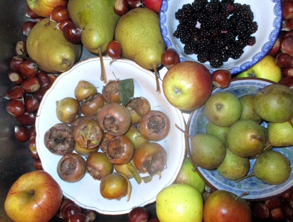 Nog eens herfst, met vrucht