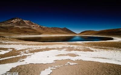 Altiplano Chileno Región de Atacama, 2008