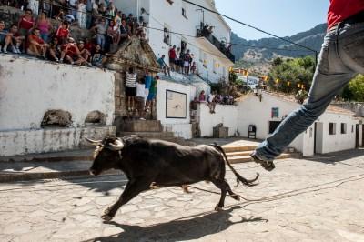 El Toro de Cuerda