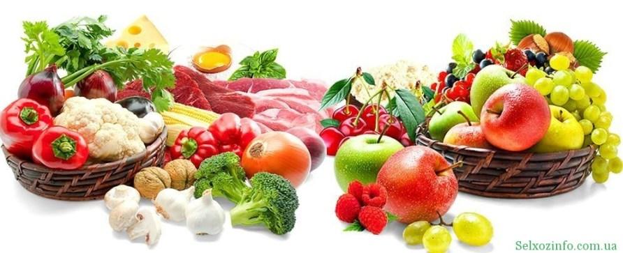 Где покупать семена овощей