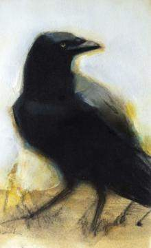 Crow by Candace Brancik