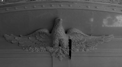 El águila matapenas2 (1)