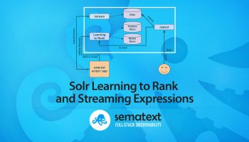 Search Relevance - Solr & Elasticsearch Similarities - sematext com