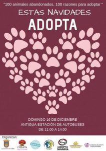 Evento solidario adopta tu mascota