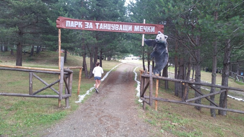 Bulgaria,osos