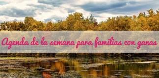 agenda familias 3 noviembre