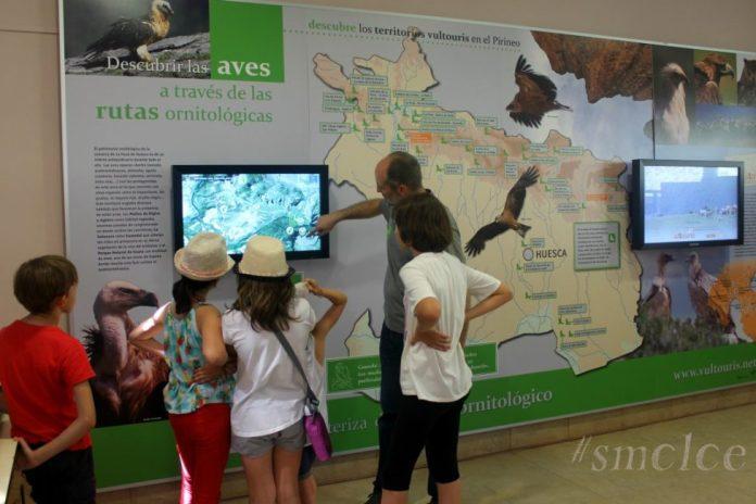 Planes con niños ecoaventura