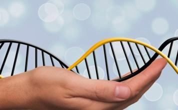 Test de ADN