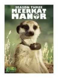 semestafakta-Meerkat Manor2