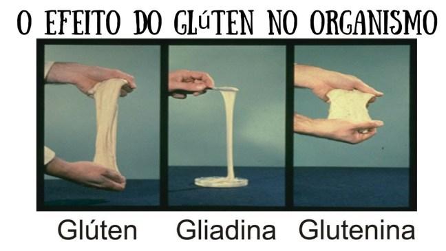 Glúten Gliadina Glutenina