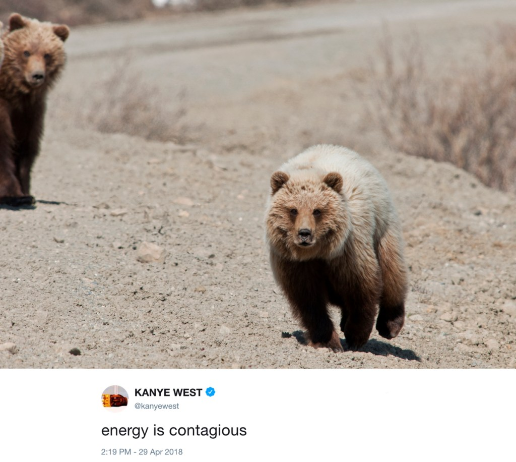 energy is contagious - kanye west tweets with photos of bears