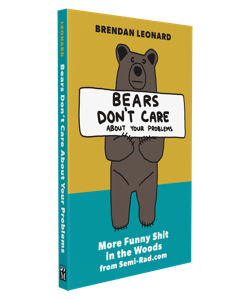 bears don't care about your problems book cover