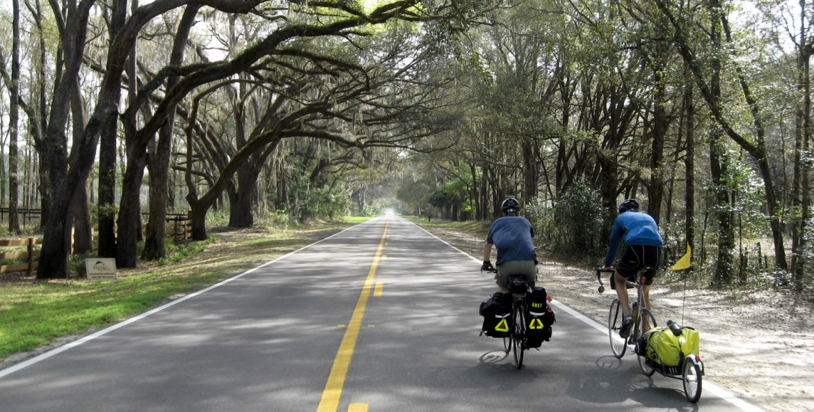 touring cyclists pedal under oak trees in Florida